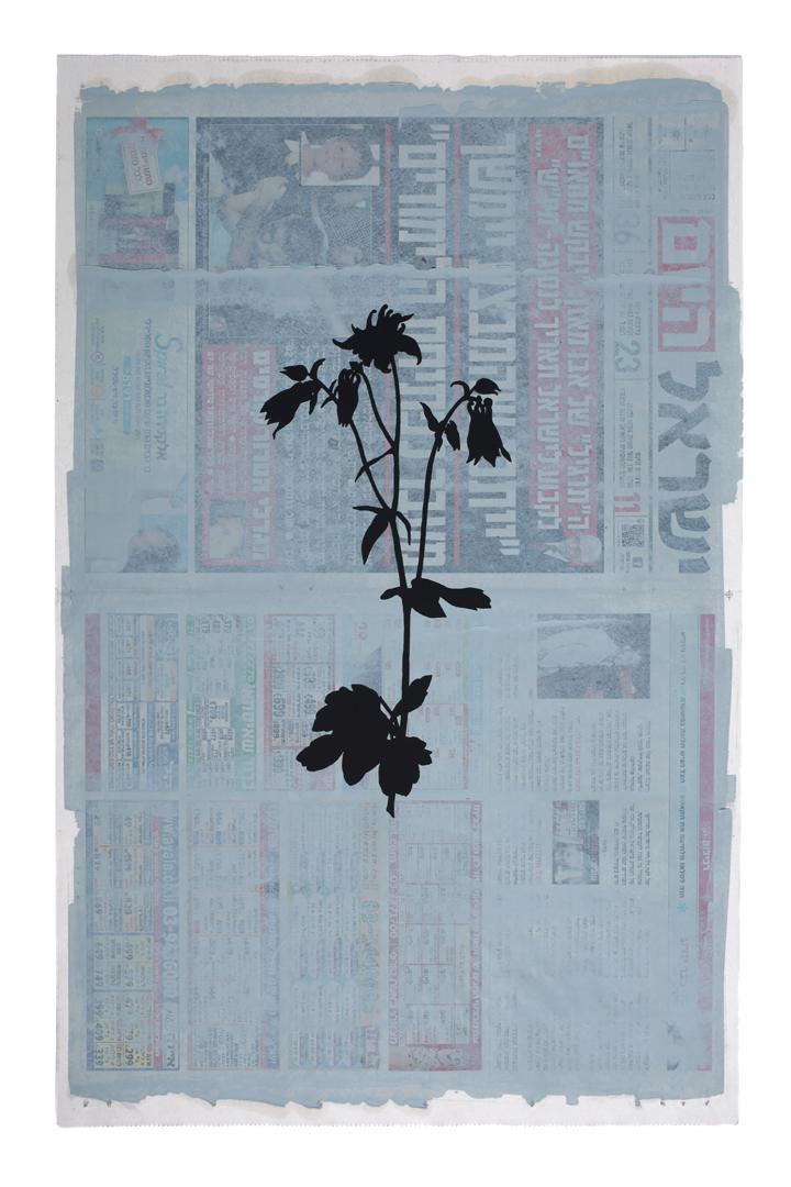 01 Larry Abramson Botany