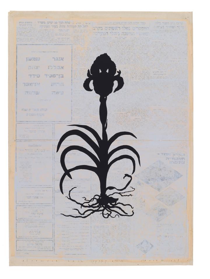 Larry Abramson Botany 06