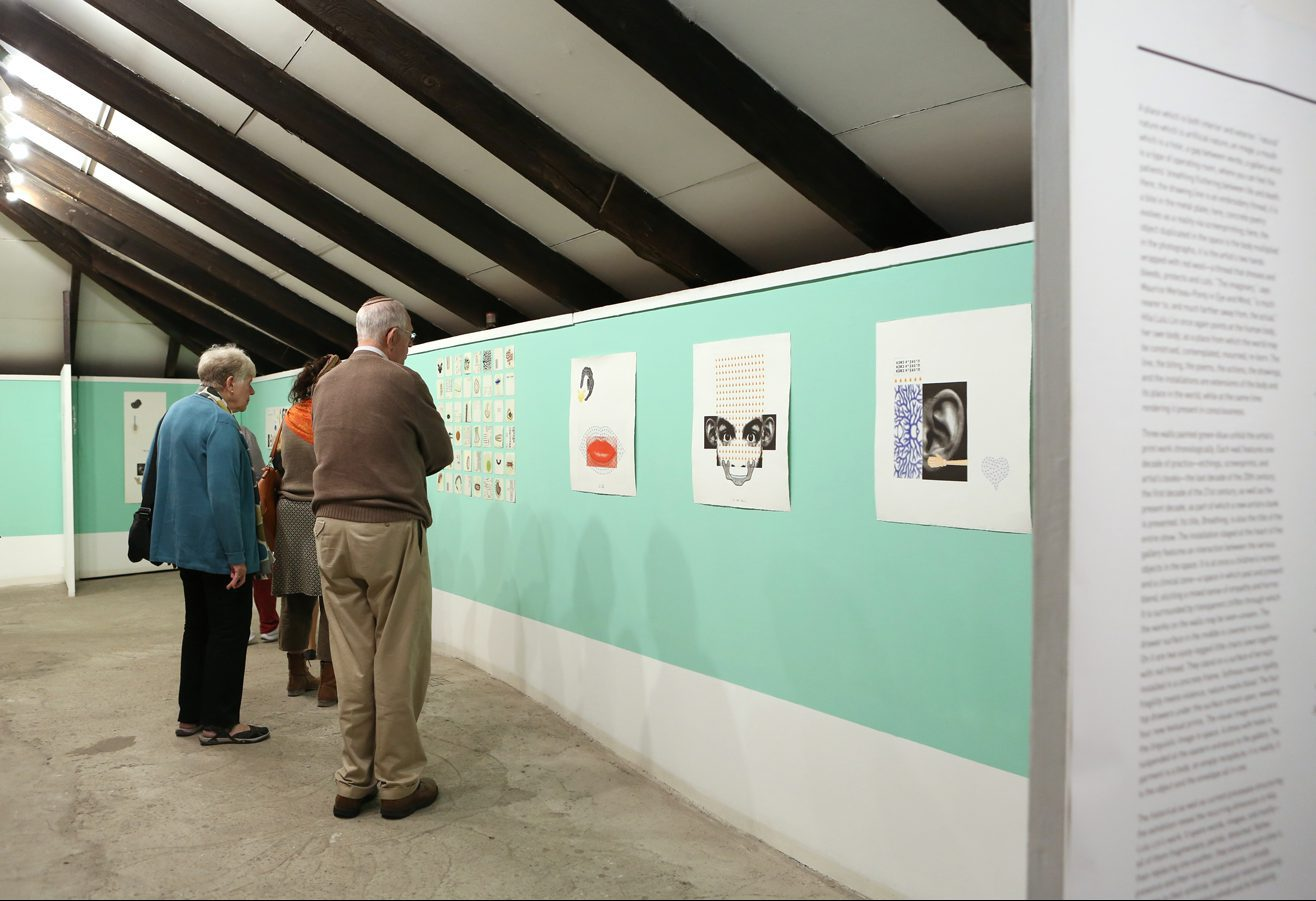 """מבקרים בתערוכה """"הילה לולו לינ: נו ששש מת"""" (2014)"""